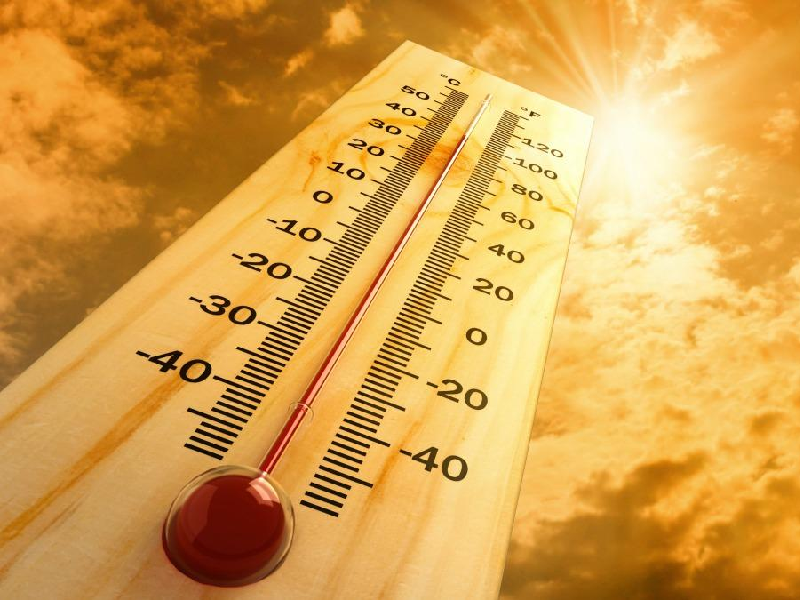 Article heading image for Gold Coast seniors suffer in the heat
