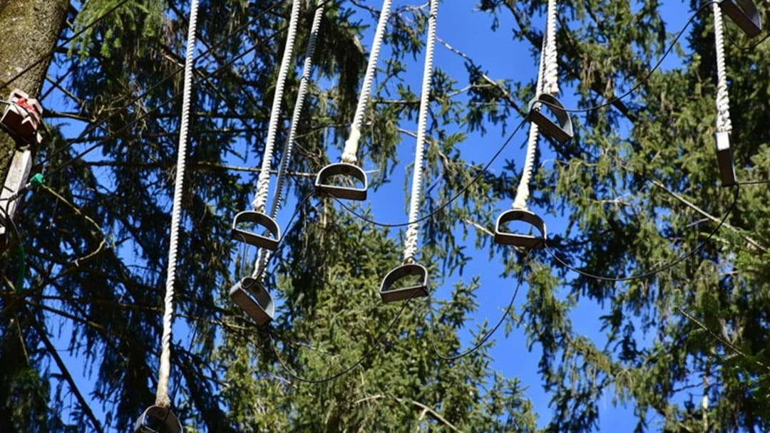 Boy In Critical Condition After Camp High Ropes Accident