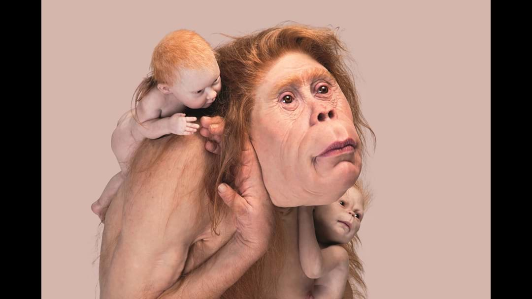 FEEL IT AT GOMA WITH PATRICIA PICCININI UP LATE
