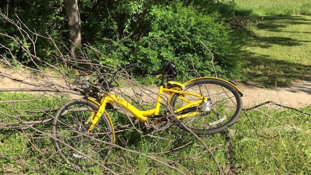 Bike Share Operators Will Now Be Fined $3000 For Bikes Dumped In Rivers, Trees Etc