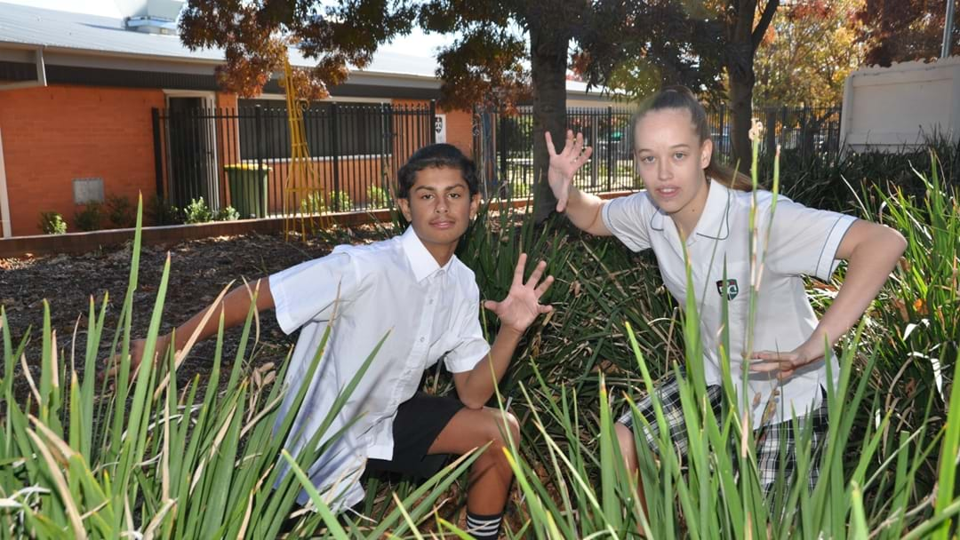 Dubbo Students Make State Dance Group