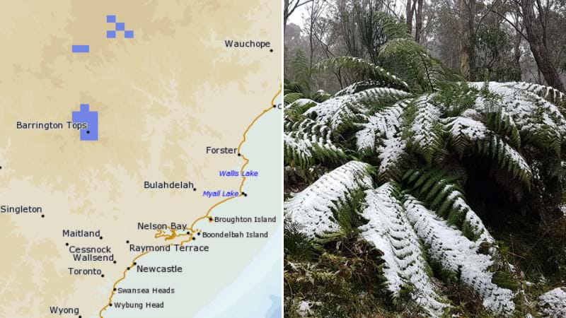 Article heading image for Snow Forecast For The Barrington Tops