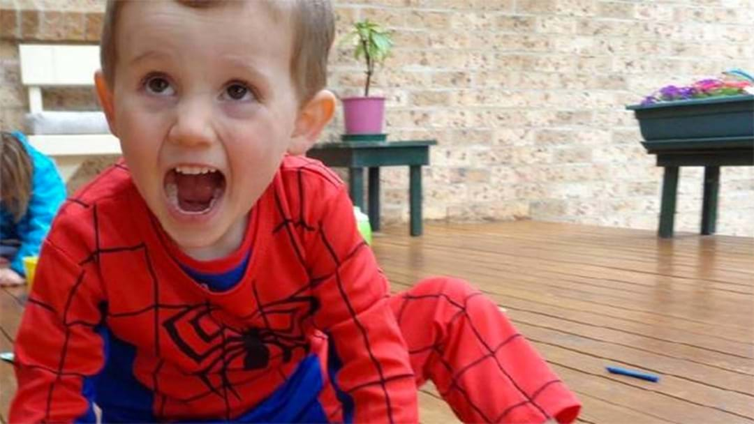 Toy Found In Search For William Tyrrell