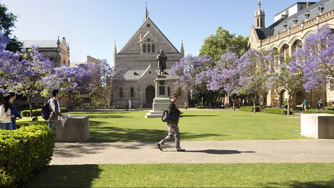 University Of Adelaide And University Of South Australia In Talks Of Merger