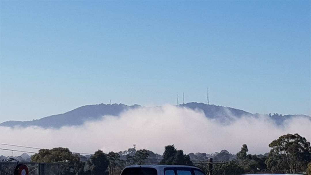 Thick Fog Causes Flight Chaos In Melbourne