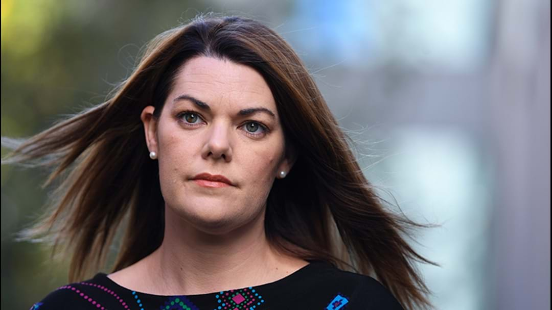 Leyonhjelm Could Face Legal Action Over Sarah Hanson-Young Comments