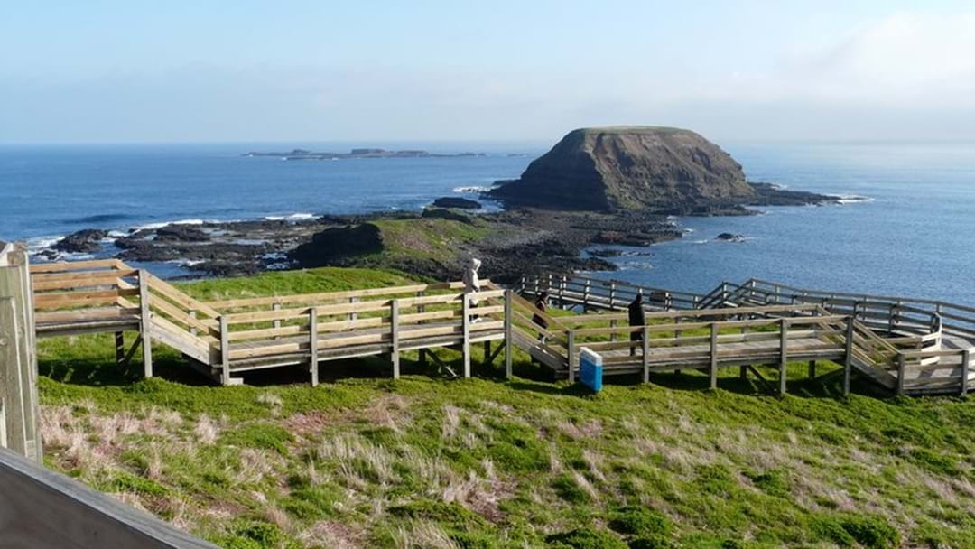 Phillip Island Could Split From Bass Coast Shire