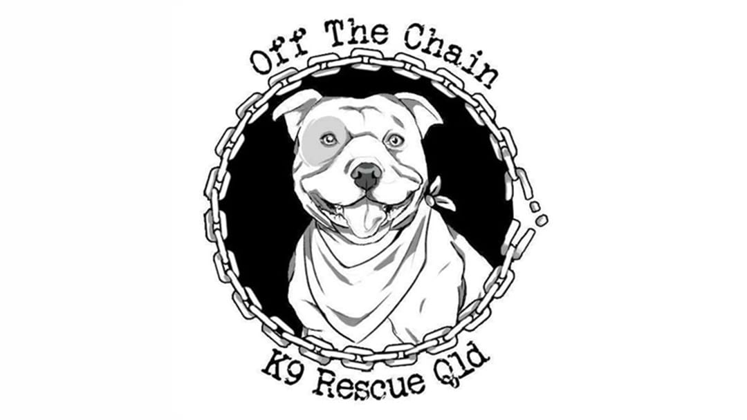 Off The Chain K9 Rescue Group: Adopt at Pet Day