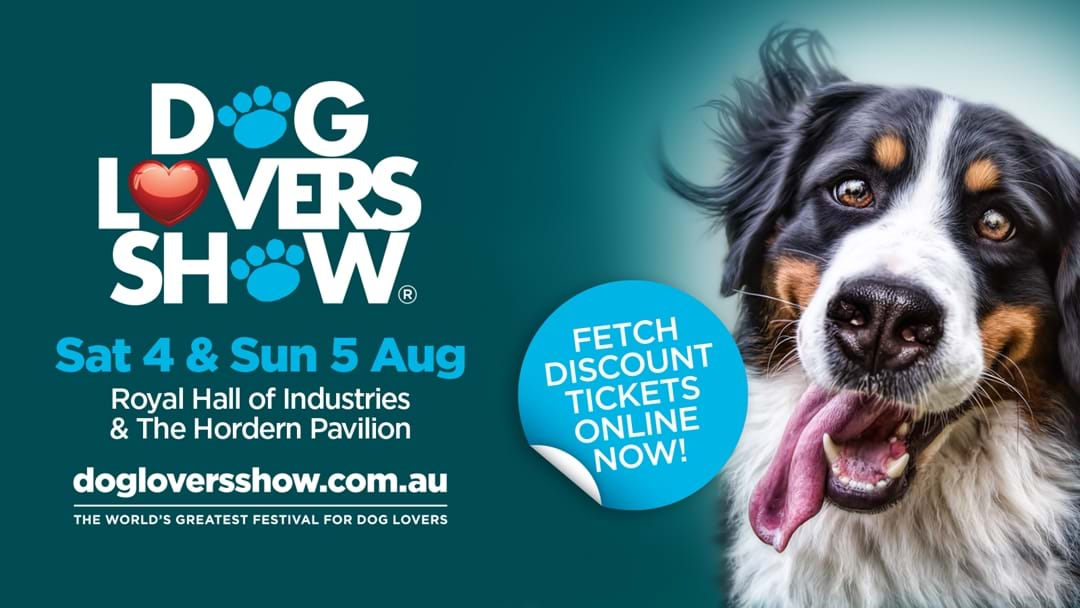 The Dog Lovers Show is searching for Sydney's VI-Pooch