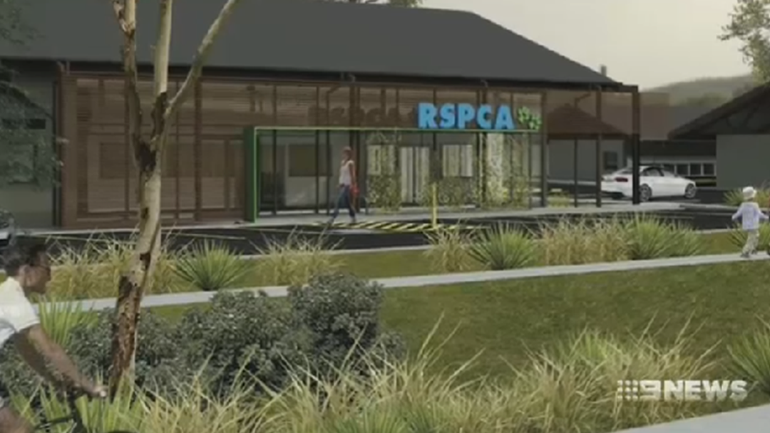 Two Years in the Making: A New RSPCA Shelter for Toowoomba