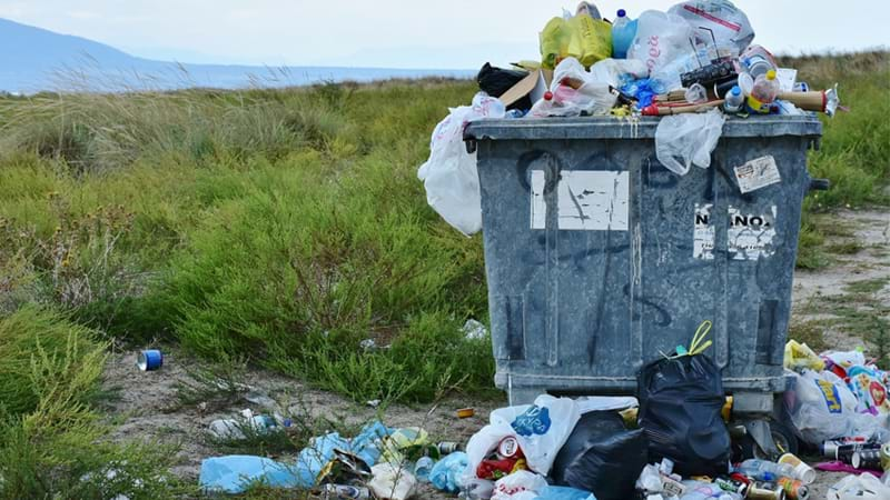 Article heading image for The Recycling Mistakes You're Probably Making