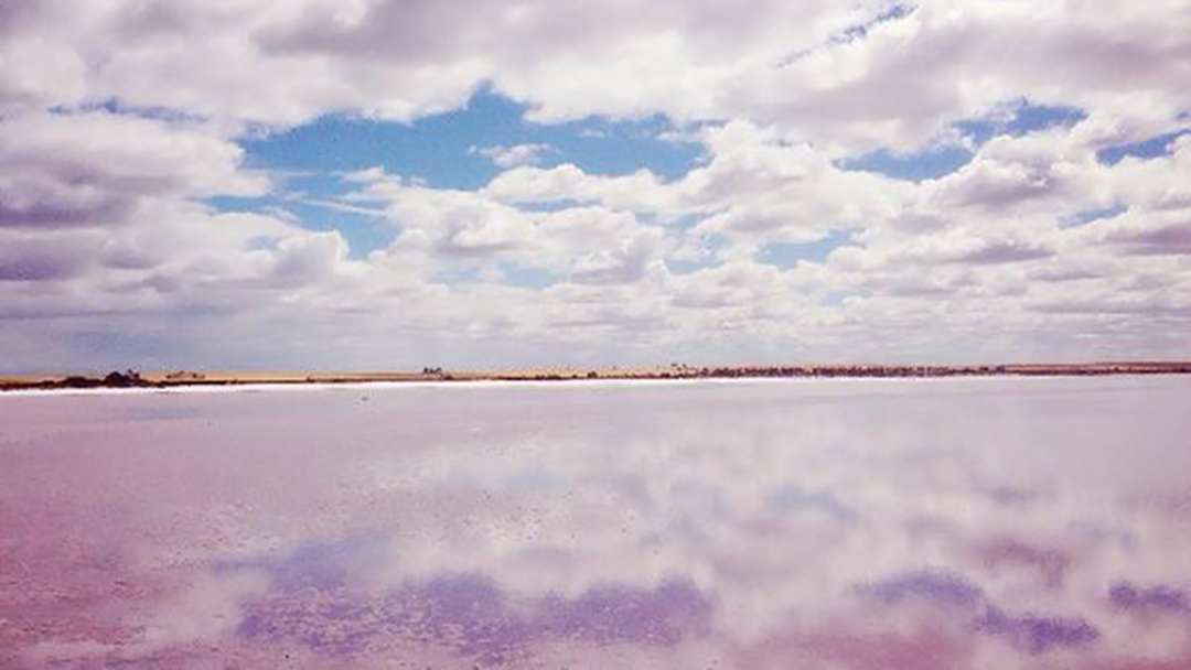 Did You Know There Is A Massive Pink Lake In Victoria?