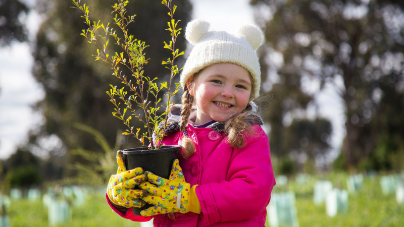 Article heading image for Get Your Hands Dirty This National Tree Planting Day!