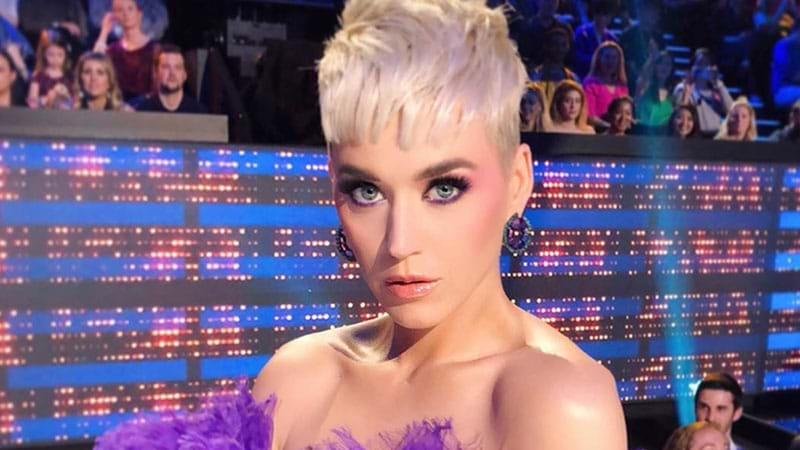 Article heading image for Katy Perry Wants To Adopt A Puppy In Adelaide