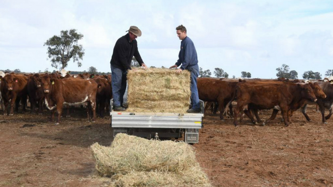 Bathurst RSL Club Makes A $10,000 Donation For Drought-Affected Farmers