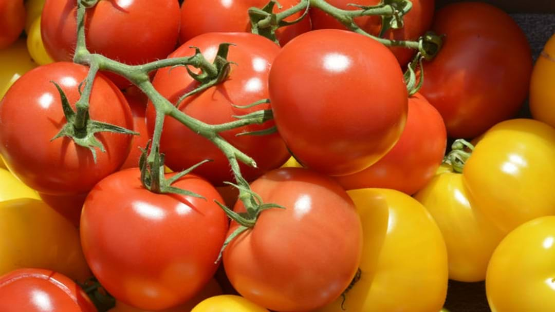 A Tomato Festival Is Coming To Sydney