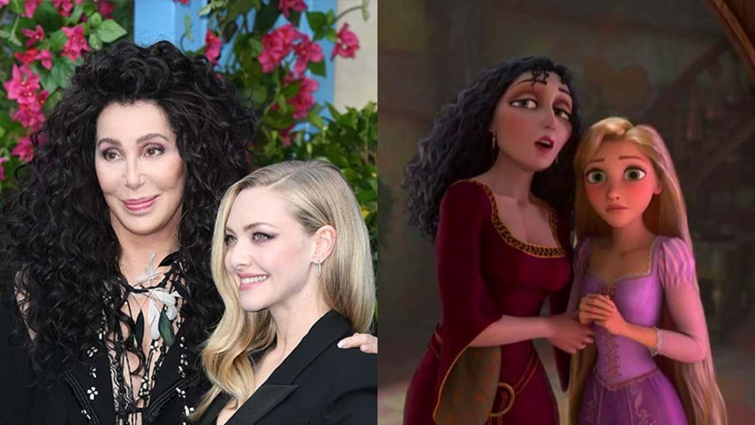 Cher And Amanda Seyfried Look Exactly Like Rapunzel & Mother Gothel!