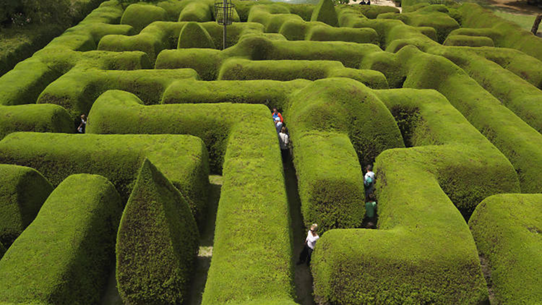 Have You Wandered Through Australia's Oldest Hedge Maze Yet?