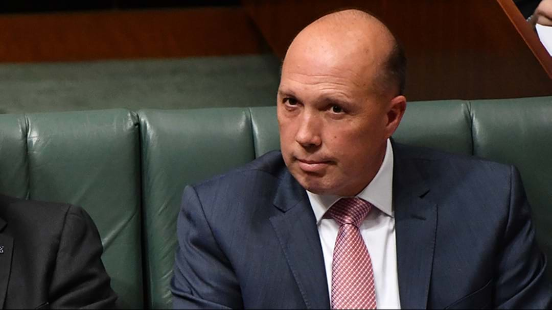 Claims Peter Dutton Intervened In Au Pair Case For AFL Boss Gil McLachlan