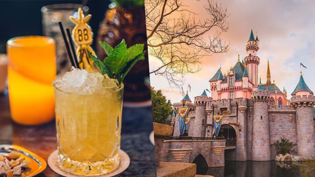 Disneyland Now Serves Alcohol, So Bottoms Up Princess!