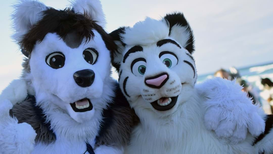 "We Spoke To A Real Life ""Furry"" & Their Life Is Not The Stereotype That You Think"