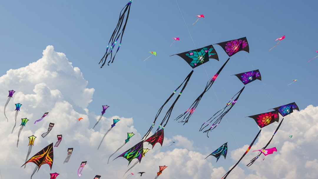 A Spectacular Kite Festival Flies Into The Gold Coast This Weekend