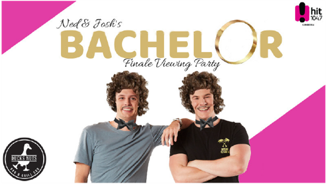 Ned & Josh's Bachelor Viewing Party