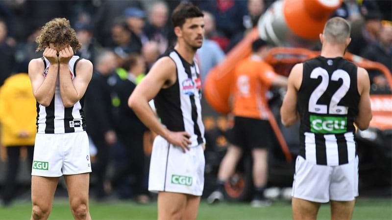 Article heading image for Collingwood Supporters Have Started A Petition To Overturn The Grand Final Result
