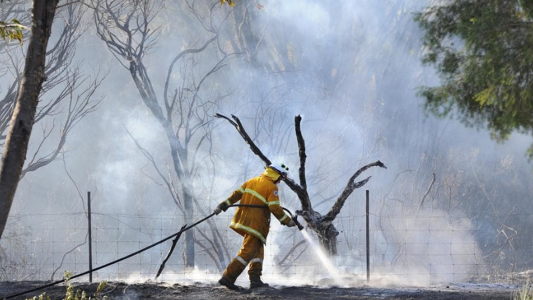Why Is Fire Action Week Important For You?