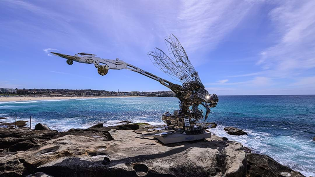 Sculpture by the Sea Is Back This Month!