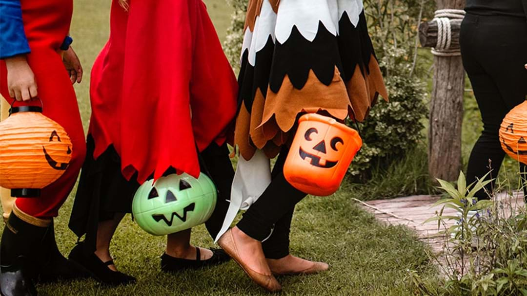 List Of Trick-Or-Treat Friendly Houses In Adelaide This Halloween!