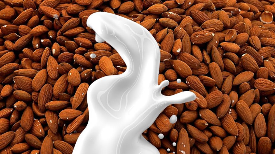 Is Almond Milk Actually Milk?