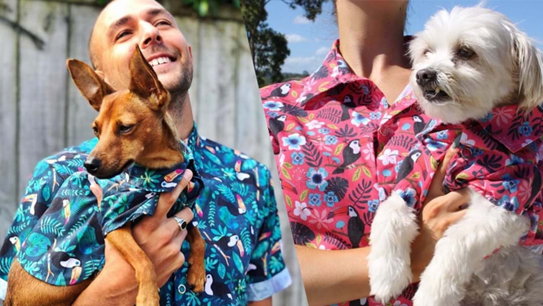 Matching Shirts For You & Your Doggo Exist & They're Paw-fect!