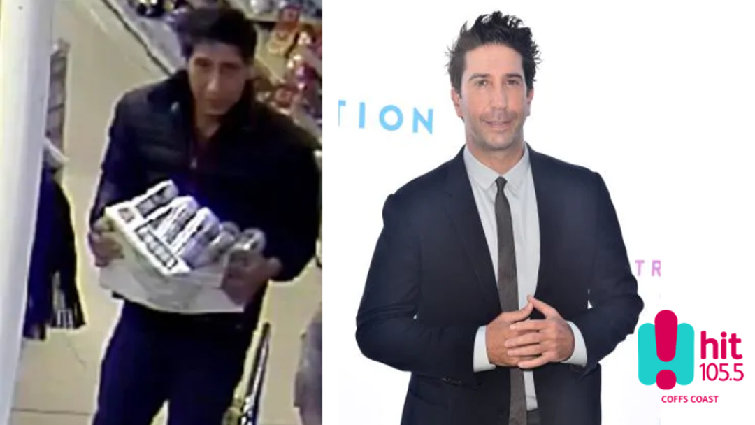 David Schwimmer lookalike Wanted for Crime Spree