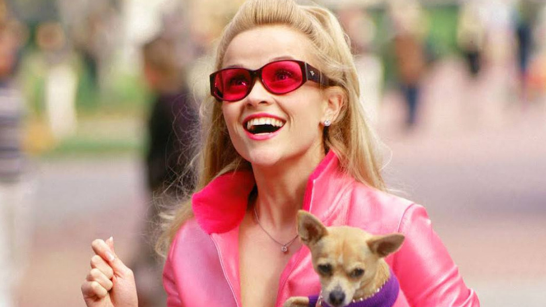 Could You Be Griffith's Elle Woods? Auditions Are Happening Later This Year!