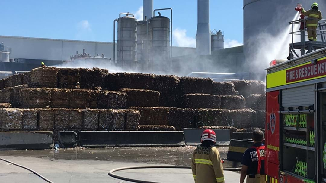 Recycled Paper Alight At Paper Mill In Matraville