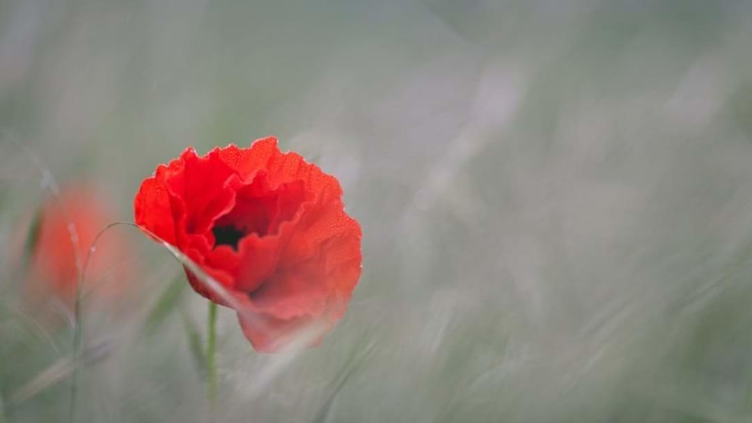 WW1 Armistice Centenary In Drouin