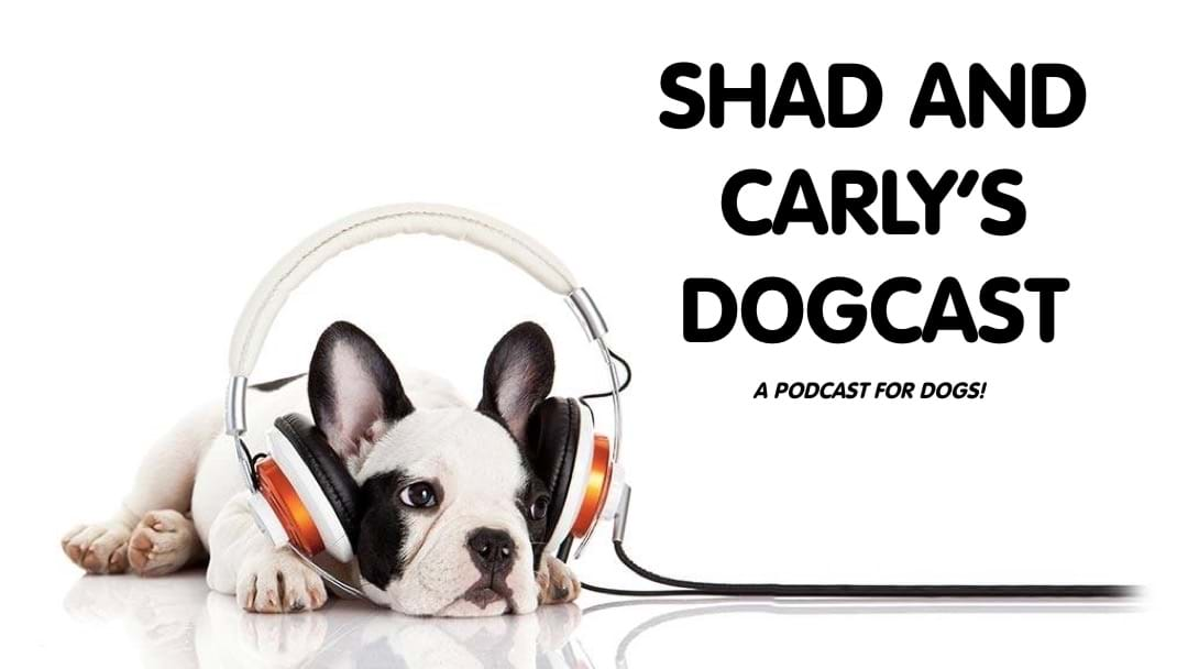 ITS HERE! Shad and Carlys Dogcast!