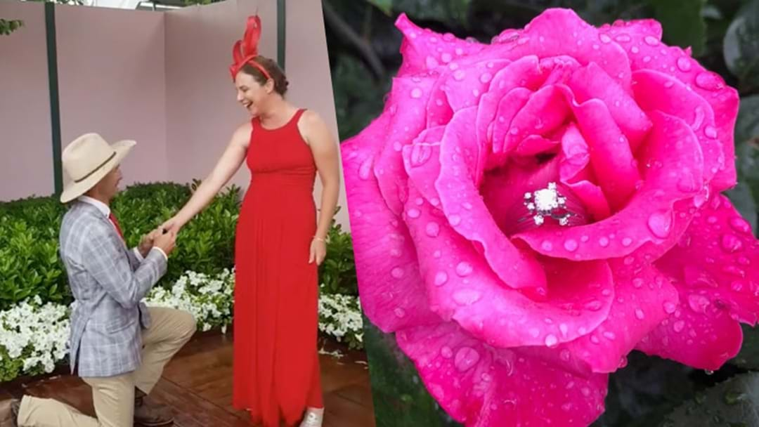 Sean From MAFS Proposed To His GF At Melbourne Cup & She Didn't Say Neigh