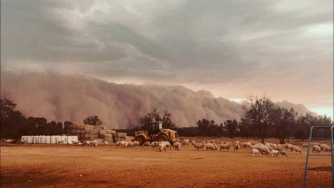 A MASSIVE Dust Storm Is Heading For Sydney So Take Care
