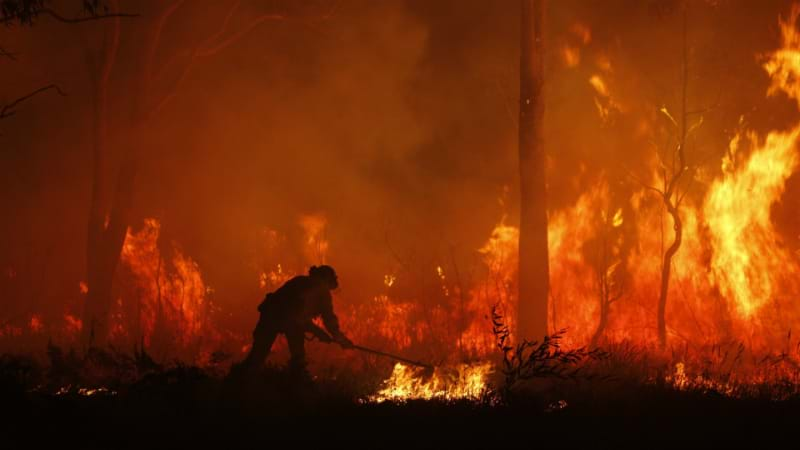 Article heading image for LIVE COVERAGE: Campvale Bushfire Emergency