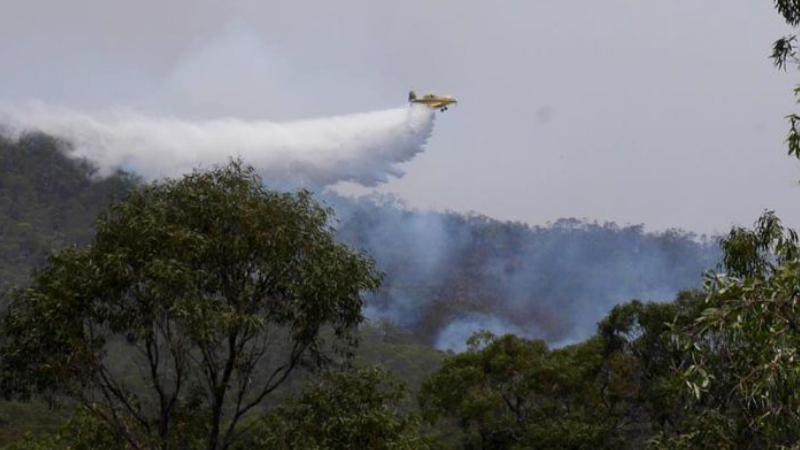 Article heading image for How You Can Help Those Affected By The Gladstone Region Bushfires
