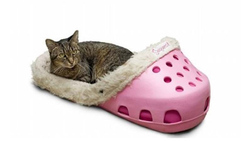 Article heading image for This Pet Bed Is Basically A HUGE & Comfy Croc That Will Keep Your Cat Purring