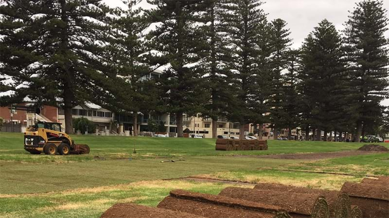 Glenelg Residents Annoyed That Colley Reserve Grass Has Been Destroyed