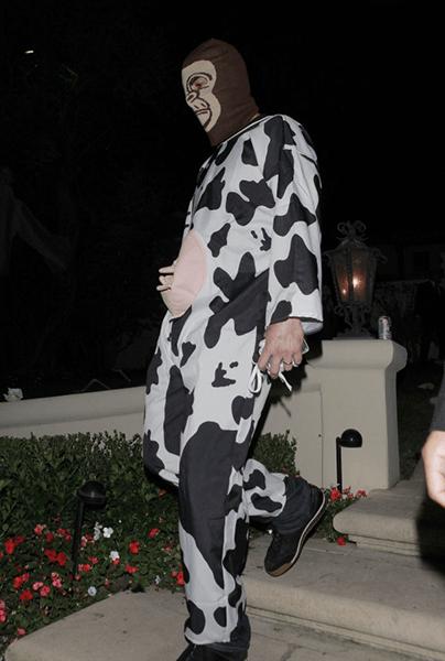 cow monkey